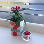 ナデシコと和紙プランターにご縁花