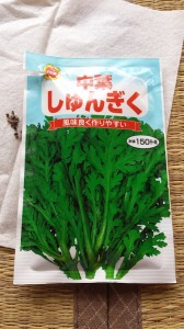 春菊の室内栽培