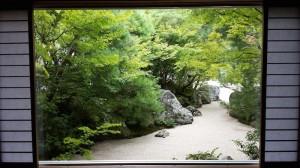 日本庭園の色
