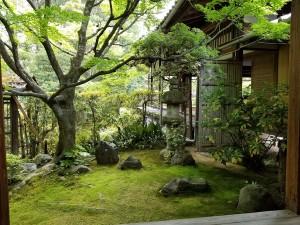 京都のお庭